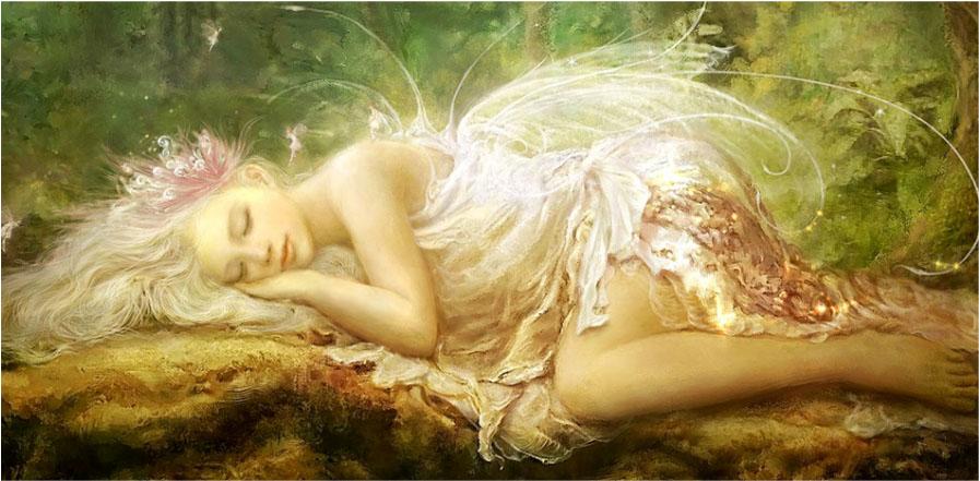 fairy copy